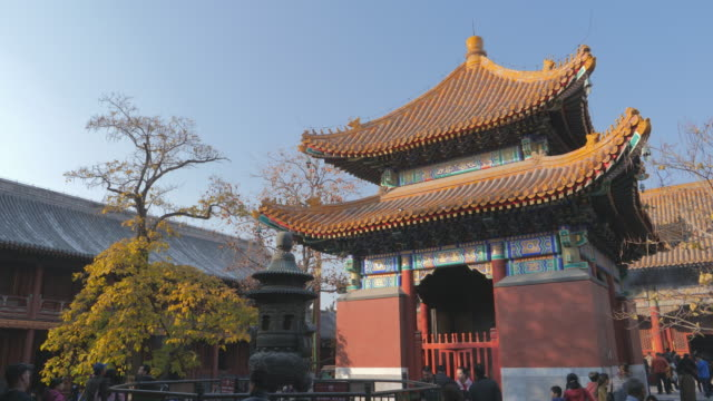 ws chinese architecture atêyongheêtemple, beijing, china - lamasery stock videos and b-roll footage