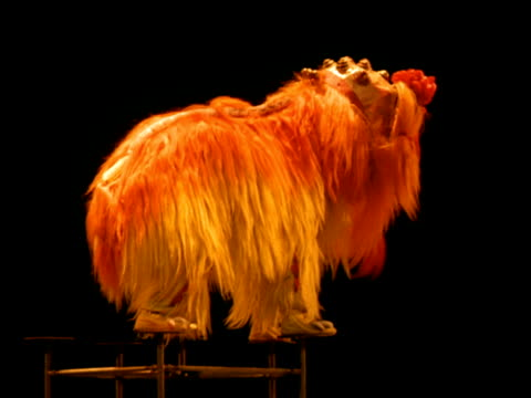 vídeos y material grabado en eventos de stock de chinese circus dragon performs balancing tricks then falls off podium, china - dragon chino