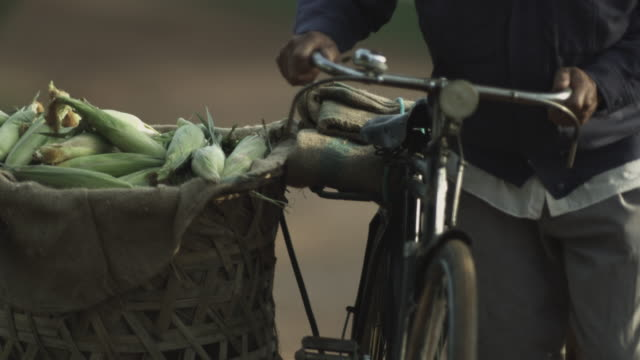 chinese farmer with pushbike carrying corn. - südostasien stock-videos und b-roll-filmmaterial