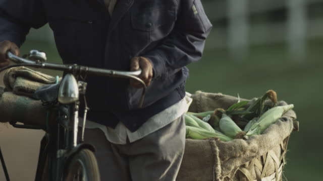 Chinese Farmer with pushbike carrying corn.