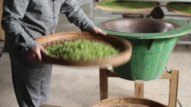 chinese green tea, handmade tea scene - drying stock videos & royalty-free footage