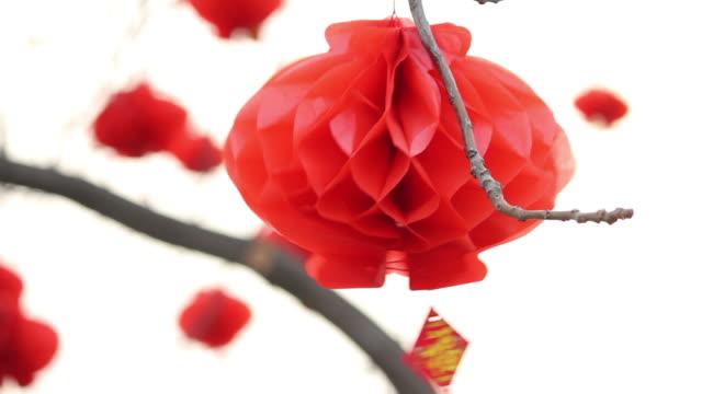 la ls cu chinese lantern festival celebrations on tree/xian,shaanxi,china - chinese lantern festival stock videos and b-roll footage