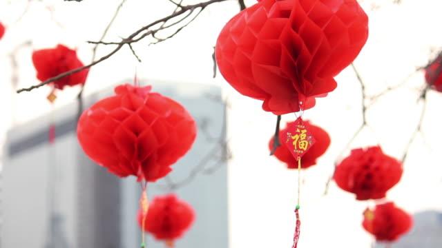 LA LS CU Chinese Lantern Festival celebrations on tree/xian,shaanxi,china