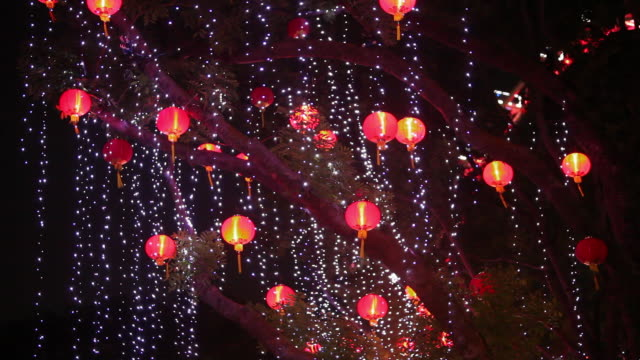 ws chinese lanterns and lights on a tree - chinesisches laternenfest stock-videos und b-roll-filmmaterial