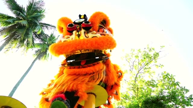 chinese lion dance in a chinese new year's celebration. - dragon stock videos & royalty-free footage