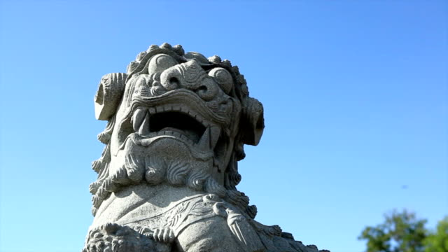 chinese lion - imperial lion stock videos and b-roll footage