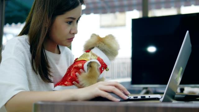 vídeos de stock, filmes e b-roll de ano novo chinês de mulher com animal de estimação - pet clothing