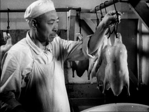 chinese produced cultural survey of 1962 china - 1962 stock videos and b-roll footage