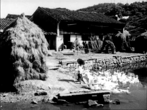 stockvideo's en b-roll-footage met chinese produced cultural survey of 1962 china - 1962