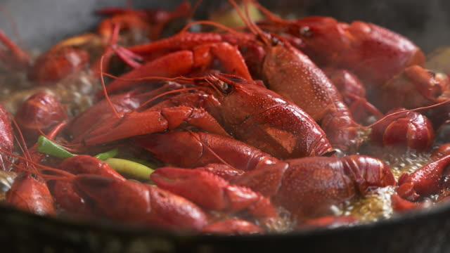 chinese spicy crayfish - prawn stock videos & royalty-free footage