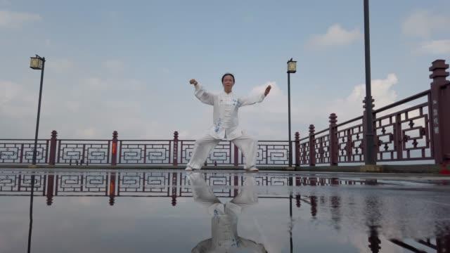 chinese woman practicing tai chi - asiatischer kampfsport stock-videos und b-roll-filmmaterial
