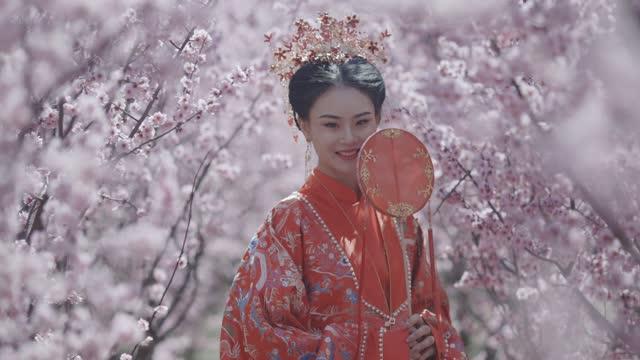 vídeos de stock, filmes e b-roll de mulheres chinesas em hanfu, roupas antigas - arte, cultura e espetáculo