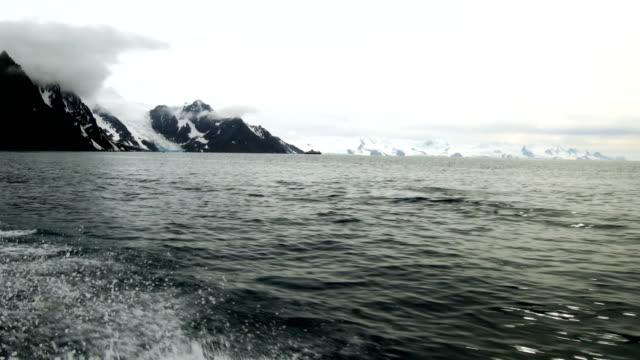 美しい青い海と氷山敵対ヒゲペンギン