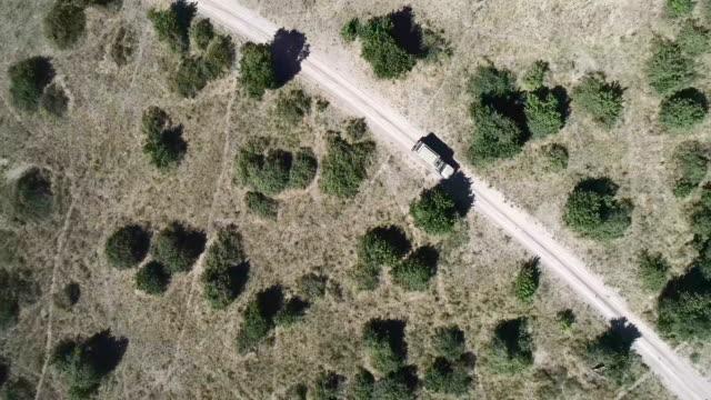 Chobe National Park. Aerial view