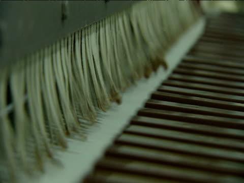 Chocolate bars pass along conveyer belt
