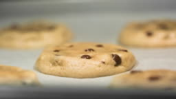 Chocolate Chip Cookies Baking in the Oven Time Lapse
