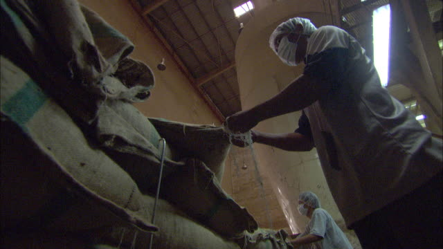 chocolate factory workers untie burlap sacks full of cacao beans. - position stock-videos und b-roll-filmmaterial