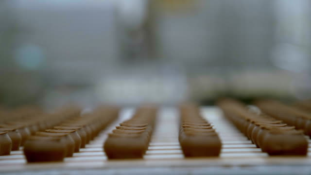 chocolate truffle centers pass along a production line - chocolate factory stock videos & royalty-free footage
