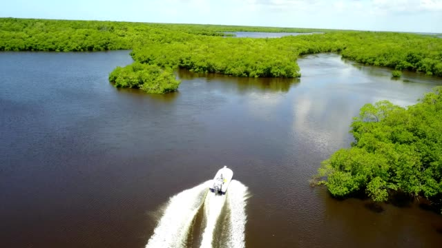 chokoloskee cruisin' through between the oyster islands - gulf coast states stock-videos und b-roll-filmmaterial