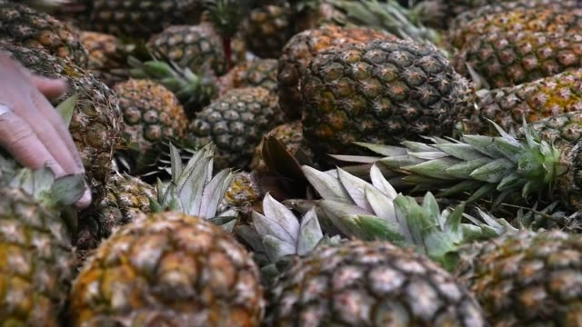 choosing a pineapple at the supermarket - pineapple stock videos & royalty-free footage