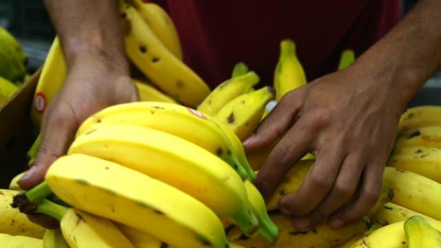 choosing bananas at the supermarket - banana stock videos & royalty-free footage