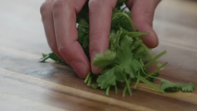 chopping coriander - parsley stock videos and b-roll footage