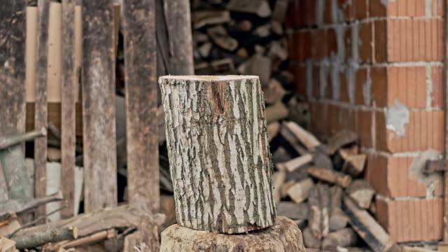SLO MO Hacken Brennholz für den winter