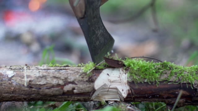 chopping wood for campfire - survival stock videos and b-roll footage
