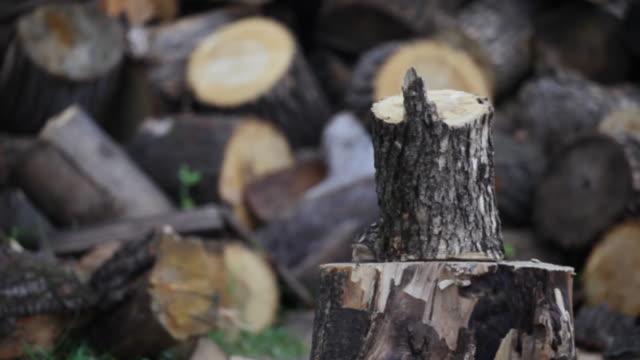 HD: Chopping wood