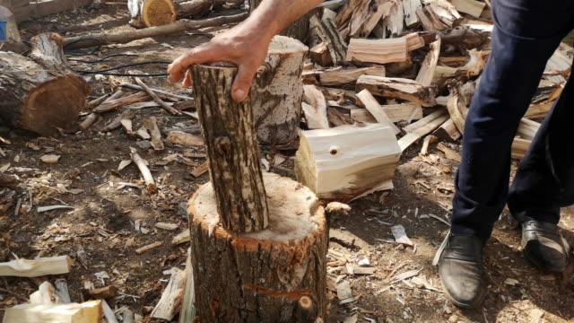 vidéos et rushes de bois de coupe - bois