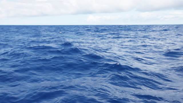 pov, choppy water on sargasso sea - wide stock videos and b-roll footage