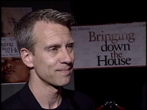chris anderson at the 'bringing down the house' premiere at the el capitan theatre in hollywood california on march 2 2003 - el capitan kino stock-videos und b-roll-filmmaterial