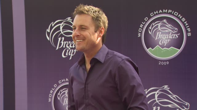 chris harrison at the breeders' cup world thoroughbred championships at arcadia ca - championships stock videos & royalty-free footage