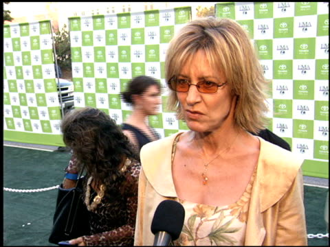 christine lahti at the environmental media awards at wilshire ebell theatre in los angeles california on october 1 2005 - environmental media awards点の映像素材/bロール