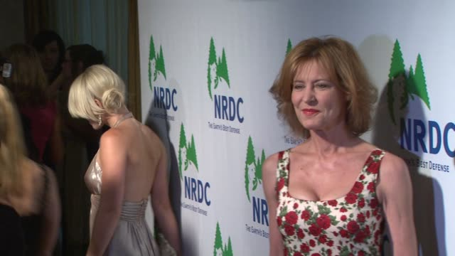 christine lahti at the national resources defense council's 20th anniversary celebration at beverly hills ca - national resources defense council stock videos & royalty-free footage