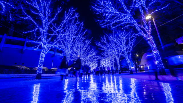 vídeos de stock e filmes b-roll de christmas blue led illuminations in tokyo - parque natural