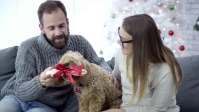 Christmas bone for the dog