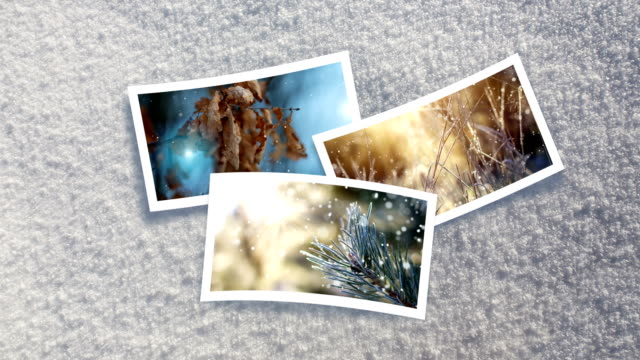 christmas card - live winter pictures (loop 4k) - surface level photos stock videos & royalty-free footage