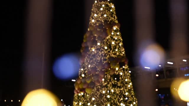 christmas decorations at public street - plant bulb stock videos & royalty-free footage