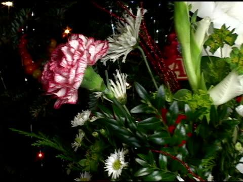 christmas flowers - flower arrangement stock videos & royalty-free footage