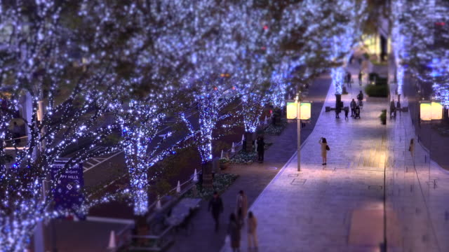 vídeos y material grabado en eventos de stock de iluminación navideña de keyakizaka / cambio de inclinación - tilt shift