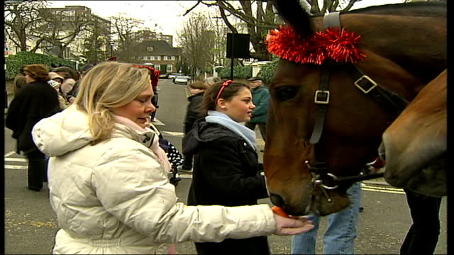 kings troop royal artillery spreads christmas cheer england london st john's wood ext local residents feeding carrots to horses from king's troop... - royal horse artillery stock videos and b-roll footage