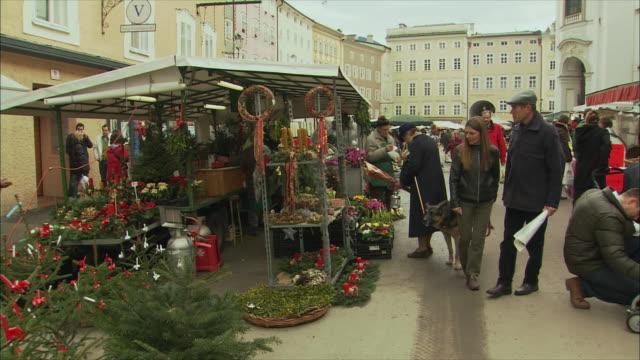 vídeos de stock, filmes e b-roll de ws pan christmas market stall selling christmas trees / salzburg, austria - planta de vaso