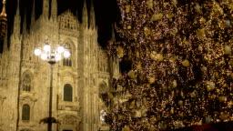 Christmas Milan Cathedral Tree