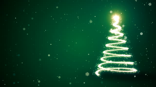 World S Best Christmas Tree Types Stock Video Clips And