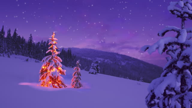 christmas tree glowing on a snowy mountain side - non urban scene stock videos & royalty-free footage