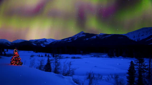 christmas tree glowing outdoors under the northern lights stock footage video getty images