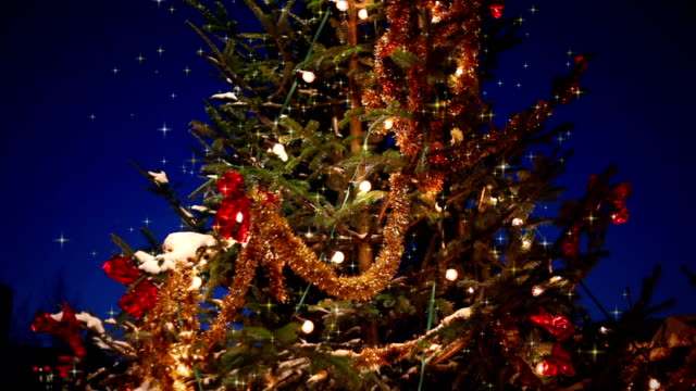 Weihnachten Baum in der Nacht