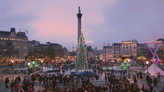 Christmas tree in Trafalgar Square in London.