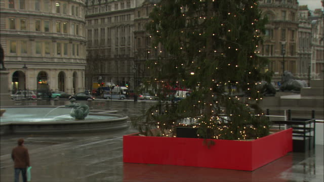 zo ws christmas tree in trafalgar square / london, united kingdom - christmas decoration stock videos & royalty-free footage